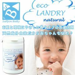 送料無料 スッピンベビー パウデオ エコランドリー サーティーン 洗濯 洗剤 赤ちゃん アルカリ性 洗剤 部屋干し