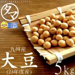 【送料無料】九州産 大豆 5kg(24年度産 一等級ダイズ)市場特別価格で「大豆」販売中!【生大豆】【大豆の栄養】【国産 大豆】【豆 卸