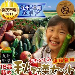 【送料無料】九州野菜お試し詰め合わせセット九州野菜18品ベストセレクション九州で採れた美味しい野菜をタマチャンショップが選りすぐ
