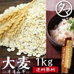 【送料無料】九州産 大麦 (1kg)食べる食物繊維の宝庫な食材。注目される第6の栄養素とされる食物繊維を豊富に含んだ食材。炊飯や料理に