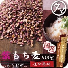 【送料無料】超希少な紫もち麦500g(福岡県産/28年度産)