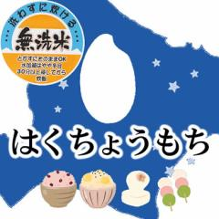 【送込】☆★もち米フェア★☆ 【無洗米】28年産北海道産はくちょうもち 白米10kg