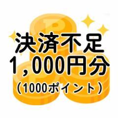 【送込】不足分決済1,000円分(不足送料・オプション等)-ポイント全額決済の方や増額できない決済を選択した方対象