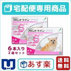 【動物用医薬品】フロントラインプラス犬用 XS(5kg未満) 6本入 2箱セット