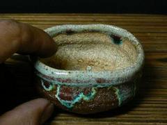 信楽小判小鉢