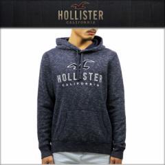 ホリスター HOLLISTER 正規品 メンズ フリースプルオーバーパーカー Textured Logo Graphic Hoodie 322-226-0034-202