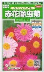 サカタのタネ 赤花除虫菊・ロビンソンミックス 【郵送対応】