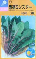中原採種場 赤茎ミンスター 23ml (ほうれんそう・ホウレンソウ) 【郵送対応】