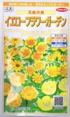 サカタのタネ イエローフラワーガーデン・花絵の具 【郵送対応】