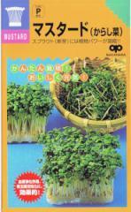 中原採種場 かんたんスプラウト マスタード(からし菜) 40ml 【郵送対応】
