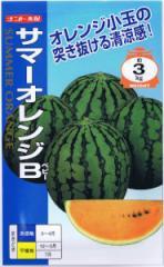 ナント種苗 スイカ サマーオレンジベビー 約8粒 【郵送対応】