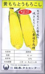 日本タネセンター 黄もちとうもろこし 40ml 【郵送対応】