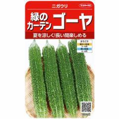 サカタのタネ 緑のカーテン ゴーヤ 3.3ml【郵送対応】