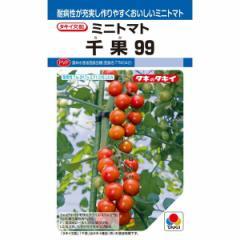 タキイ種苗 ミニトマト 千果99 14粒【郵送対応】