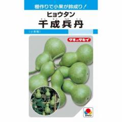 タキイ種苗 千成兵丹 50粒 【郵送対応】