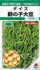 タキイ種苗 鶴の子大豆 100ml 【郵送対応】】