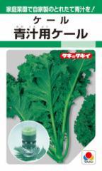 タキイ種苗 青汁用ケール 6ml【郵送対応】