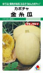 タキイ種苗 かぼちゃ 金糸瓜 約18粒 【郵送対応】
