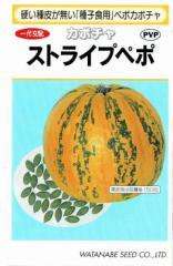 渡辺採種場 カボチャ ストライプペポ 約14粒【郵送対応】