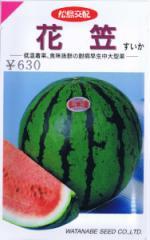 渡辺採種場 スイカ・花笠 約12粒 【郵送対応】