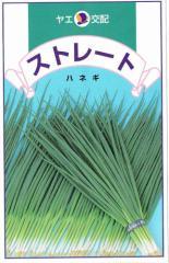 八江農芸 葉ねぎ ストレート 8ml【郵送対応】
