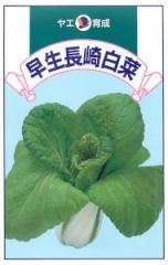八江農芸 早生長崎白菜 8ml