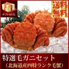 送料無料『特選北海道産ボイル毛ガニセット』(堅毛蟹4特プレミアム:大500gx2尾蟹 カニ かに 毛がに けがに けがに