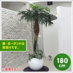 【送料無料】人工観葉植物 光触媒 パームヤシ 180cm 観葉植物・花・ガーデン 造花 室内インテリア ヤシの木 椰子 フェイク