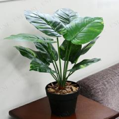 人工観葉植物 ポトス 50cm インテリア・生活雑貨 小さい ミニサイズ ミニ観葉植物 フェイクグリーン インテリアグリーン ギ