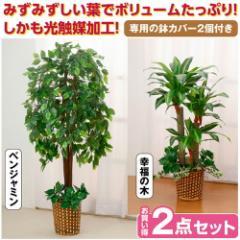 観葉植物 インテリアグリーン 2点セット 人工観葉植物 造花 光触媒 水やり不要 ベンジャミン 幸福の木(代引不可)【送料無料】
