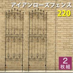 アイアンローズフェンス220(2枚組) ダークブラウン フェンス 目隠し アイアン ガーデニング 枠 柵 仕切り 目隠し(代引不可)【送料無料】