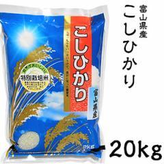 米 日本米 Aランク 27年度産 富山県産 こしひかり 20kg ご注文をいただいてから精米します。【精米無料】【特別栽培米】【こしひかり】【