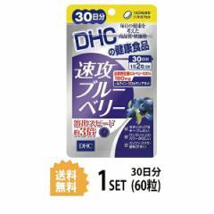 【送料無料】  DHC 速攻ブルーベリー 30日分 (60粒) ディーエイチシー