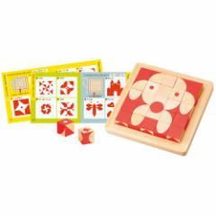 【送料無料!】 知の贈り物シリーズ 脳活キューブ 【木製玩具 知育玩具 ベビートイ こども用パズル エドインター】