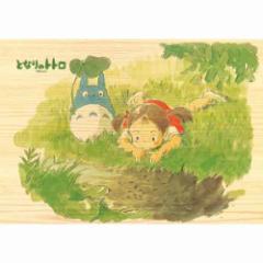 木のジグソーパズル 208ピース となりのトトロ 野原を歩こう 208-W203 【木製 スタジオジブリ ensky エンスカイ】