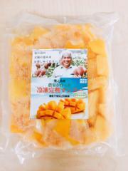 徳之島産「冷凍カットマンゴー500g」2個セット