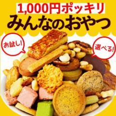 1000円ポッキリみんなのおやつシリーズ お試し クッキー フロランタンあめがけナッツ [ごま]※ふぞろいクッキー/フロランタン