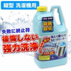 洗濯槽クリーナー 縦型洗濯機用 大容量 2000ml SSC-01 塩素系洗浄液 ニイタカ