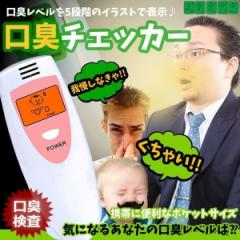 口臭チェッカー 口臭 検査 5段階 エチケット 測定器 持ち運び 匂い ニオイ チェック 簡単測定 サイズ ニンニク料理 メール