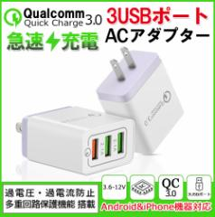 ACアダプター iPhone USB充電器 3.1A 高速充電 2口 急速同時充電器 海外対応 iPad スマホ タブレット A