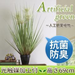 光触媒加工付き人工観葉植物 サニーグラス 高さ69cmbr消臭 グリーン 観葉植物 人工 植物 造花 鉢 土・水やり不要
