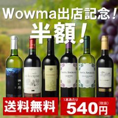 【送料無料】ワインセット 家飲み ワイン 6本 セット ボルドー入 赤ワイン 白ワイン デイリーワイン 飲み比べ 第46弾