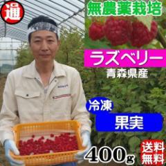 ラズベリー 冷凍 果実 送料無料 100g×4パック 無農薬栽培 無添加・無着色 国産 木苺 キイチゴ