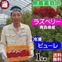 ラズベリー 冷凍 ストレートピューレ 送料無料 1kg 無農薬栽培 無添加・無着色 国産 木苺