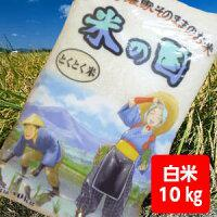 【送料無料】とくとく米10kg【沖縄・離島別途500円加算】