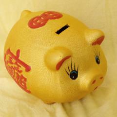 横浜中華街名物・金運を呼び込む金ブタ招財貯金箱12インチ(中の中)