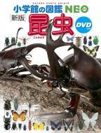 【図鑑】 小池啓一 / 新版 昆虫 DVDつき 小学館の図鑑 NEO 送料無料