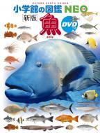 【図鑑】 井田齋 / 新版 魚 DVDつき 小学館の図鑑NEO 送料無料