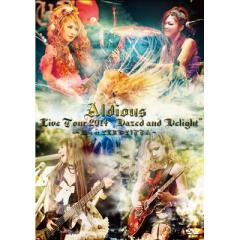"""【DVD】 Aldious アルディアス / Live Tour 2014 """"Dazed and Delight"""" 〜Live at CLUB CITTA〜 送料無料"""