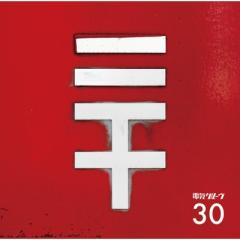 【CD】初回限定盤 電気グルーヴ デンキグルーブ / 30 【初回生産限定盤】(CD+グッズ) 送料無料